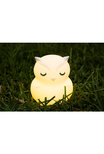 LumiPets Bluetooth Companion Owl