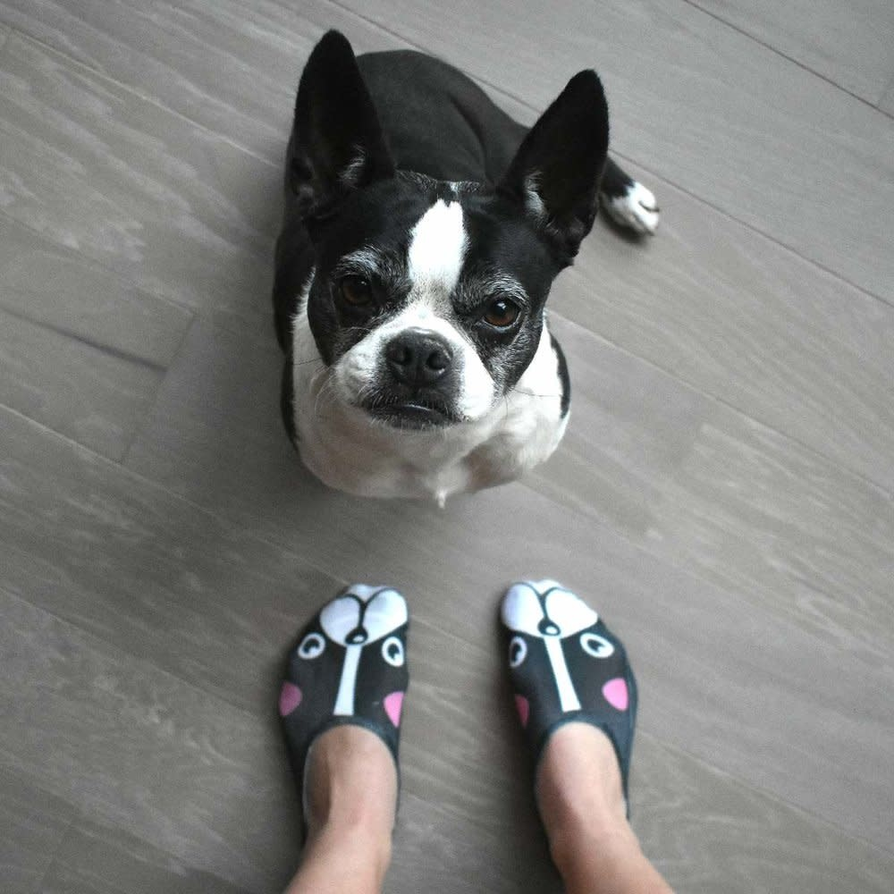 No-Show Liner Socks Frenchie-2