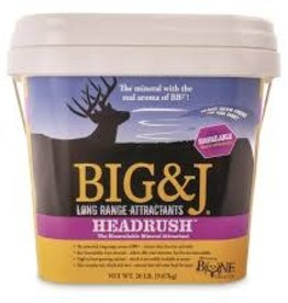 Big & J Head Rush Mineral 20lb