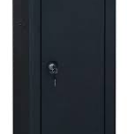 Sports Afield 10 Gun Security Cabinet