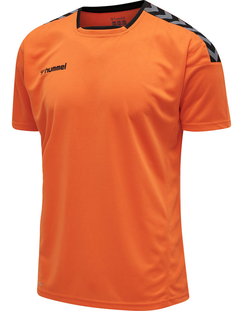 Hummel Hummel Authentic Polyester Jersey Youth