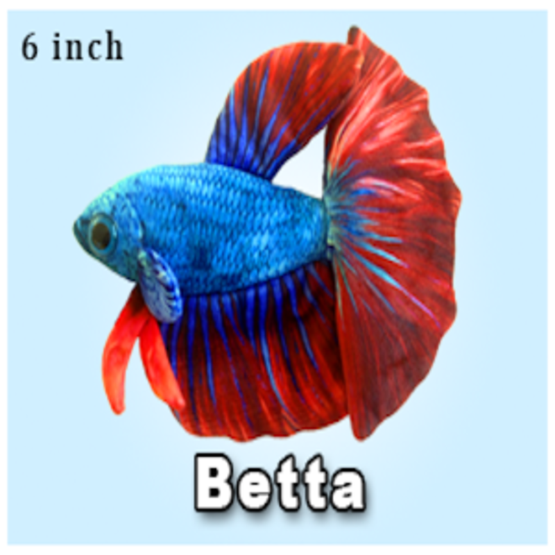 "Green Pleco 6"" Blue Betta Plushie"