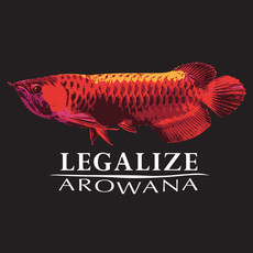 Fish Gallery Fish Gallery Black Arowana T-Shirt