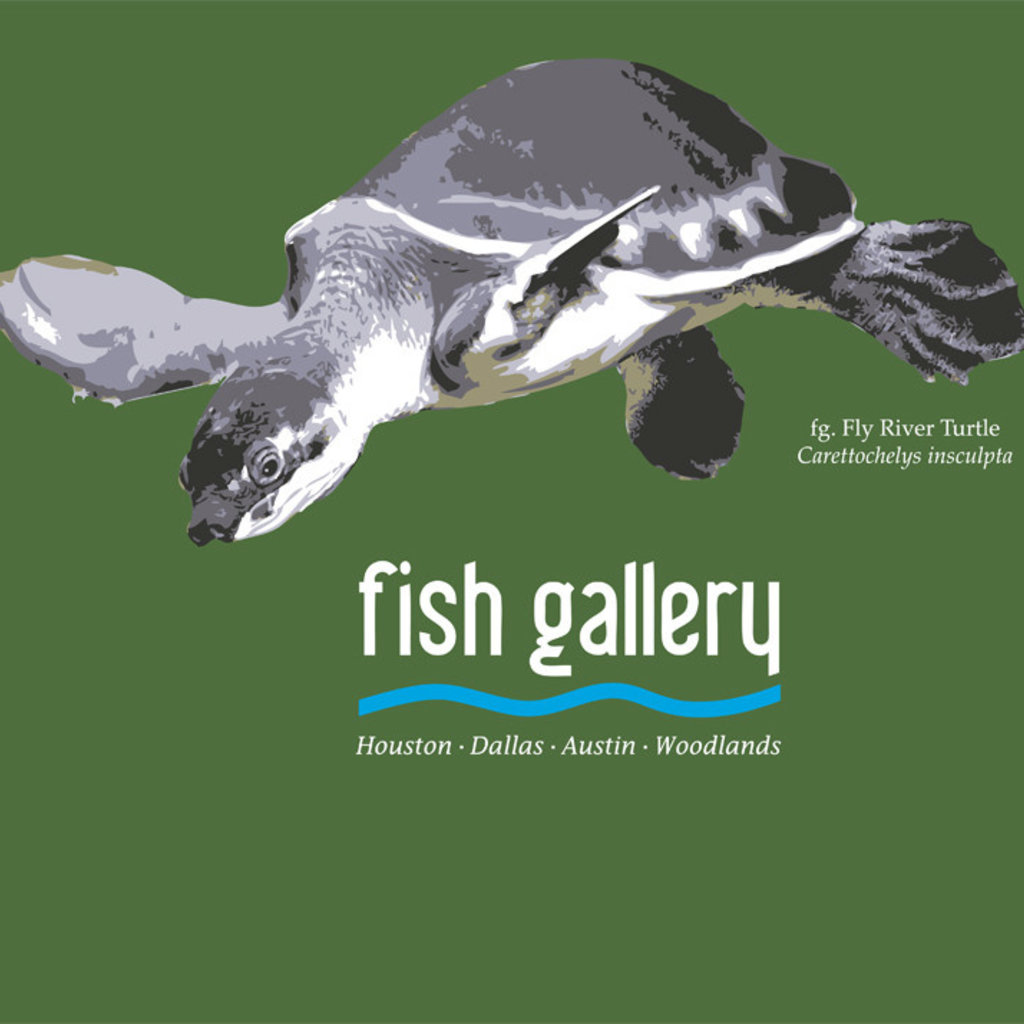 Fish Gallery Fish Gallery Green Fly River Turtle Shirt