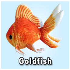 "Green Pleco 12"" Goldfish Plushie"