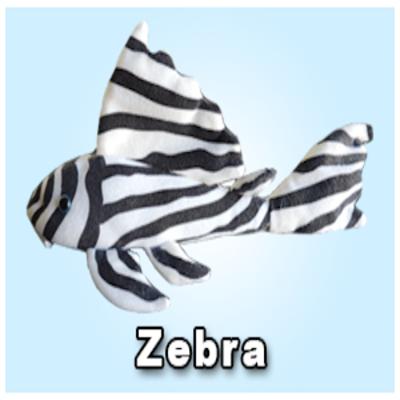 """Green Pleco 12"""" Zebra Pleco"""