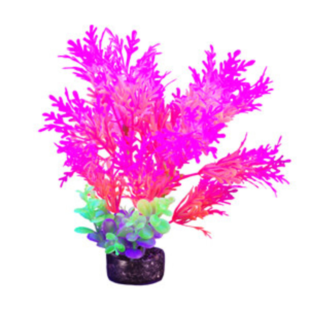 Hagen Products iGlo Plant Pink/Orange - Whisteria 7.5""
