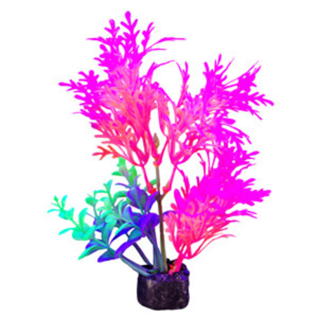 "Hagen Products iGlo Plant Pink/Orange - Whisteria 5.5"""