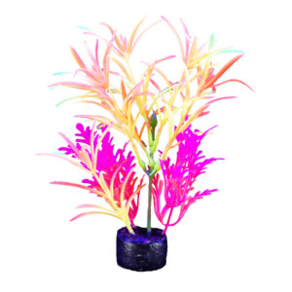 Hagen Products iGlo Plant Orange/Yellow/Pink - Fountain Plant 7.5""