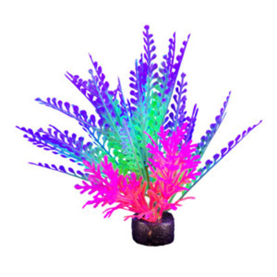 Hagen Products iGlo Plant Purple/Green - Fern 5.5""