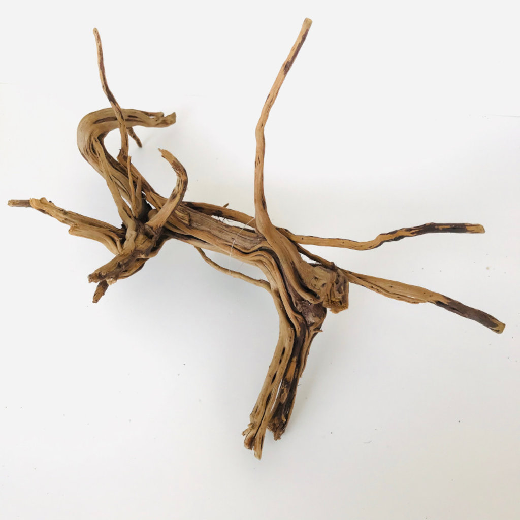 SR Aquaristik Pine Spider Wood