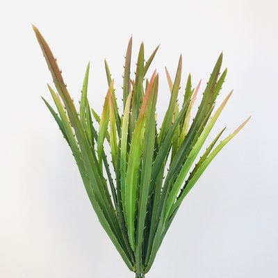 Fish Gallery Agave Grass Green/Pink