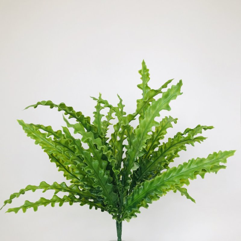 "Fish Gallery Lettuce Grass 13"""