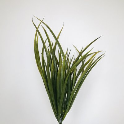 "Fish Gallery Mohawk Grass 16"" Green"