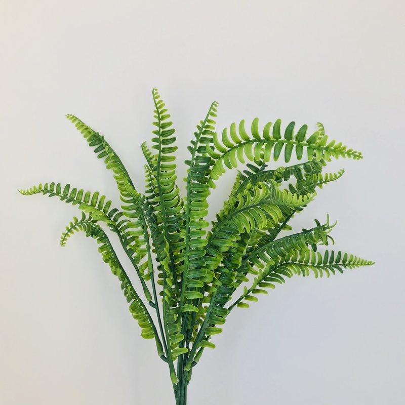 Botanical Silk Garden Mystery Fern
