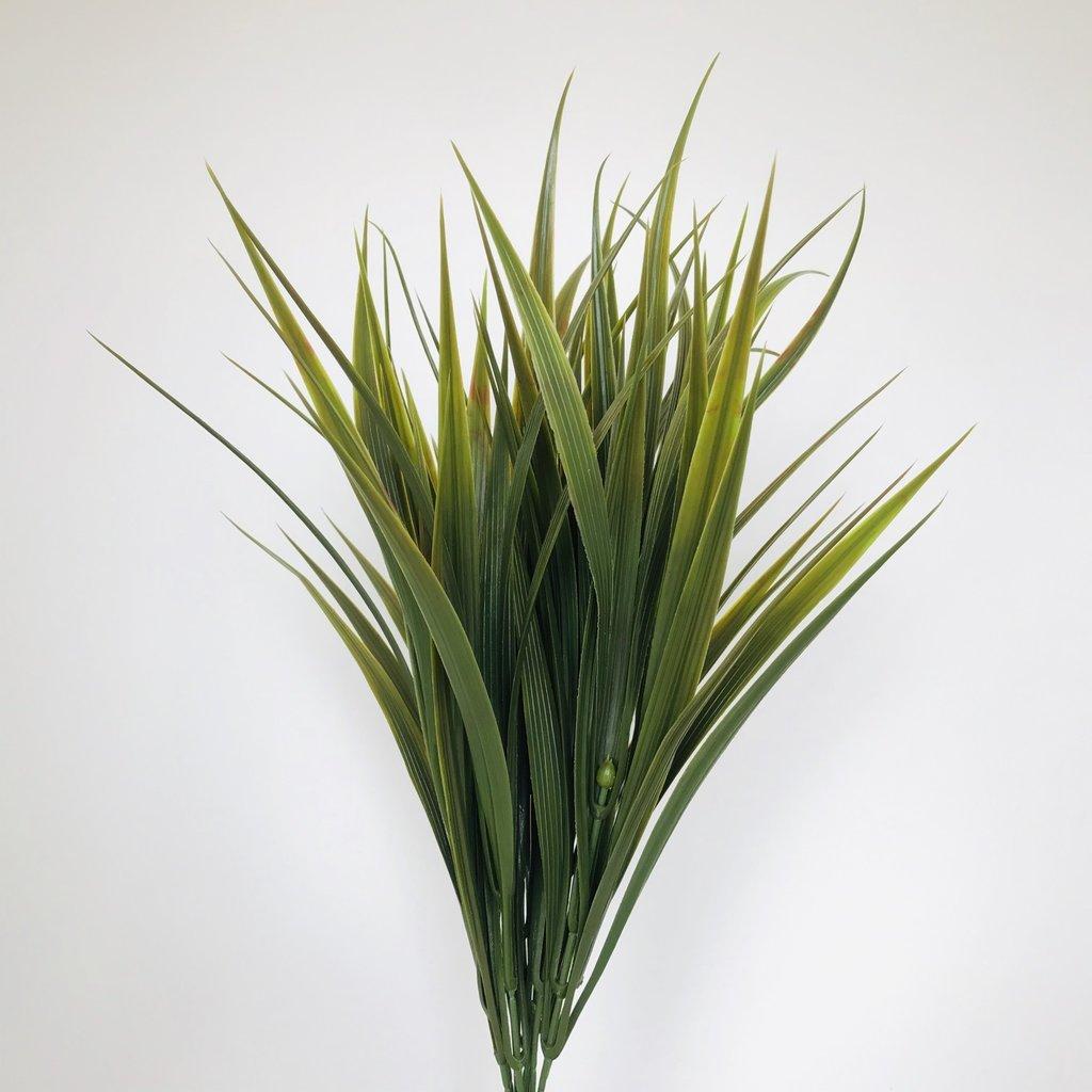 Overgrown Grass Brown