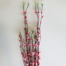 Assorted Flower Reed Grass