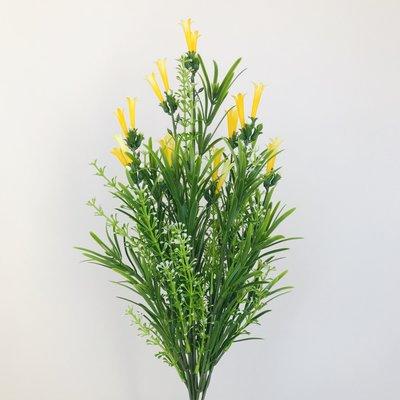 Yellow Tube Flowers