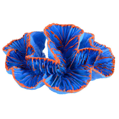 Underwater Treasure Underwater Treasures Blue Brain Coral