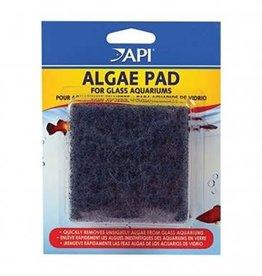 Aquarium Pharmaceuticals Algae Scraper Pad Glass