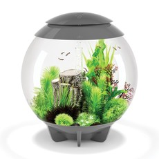OASE BiOrb HALO 60 MCR - 16 Gal - Grey