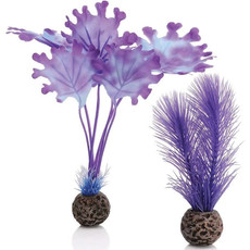 BiOrb BiOrb Purple Kelp Set - SM