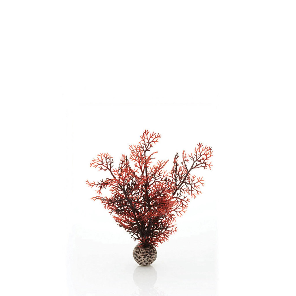 BiOrb BiOrb Crimson Sea Fan - SM
