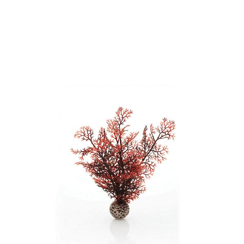 BiOrb BiOrb Crimson Sea Fan - SM