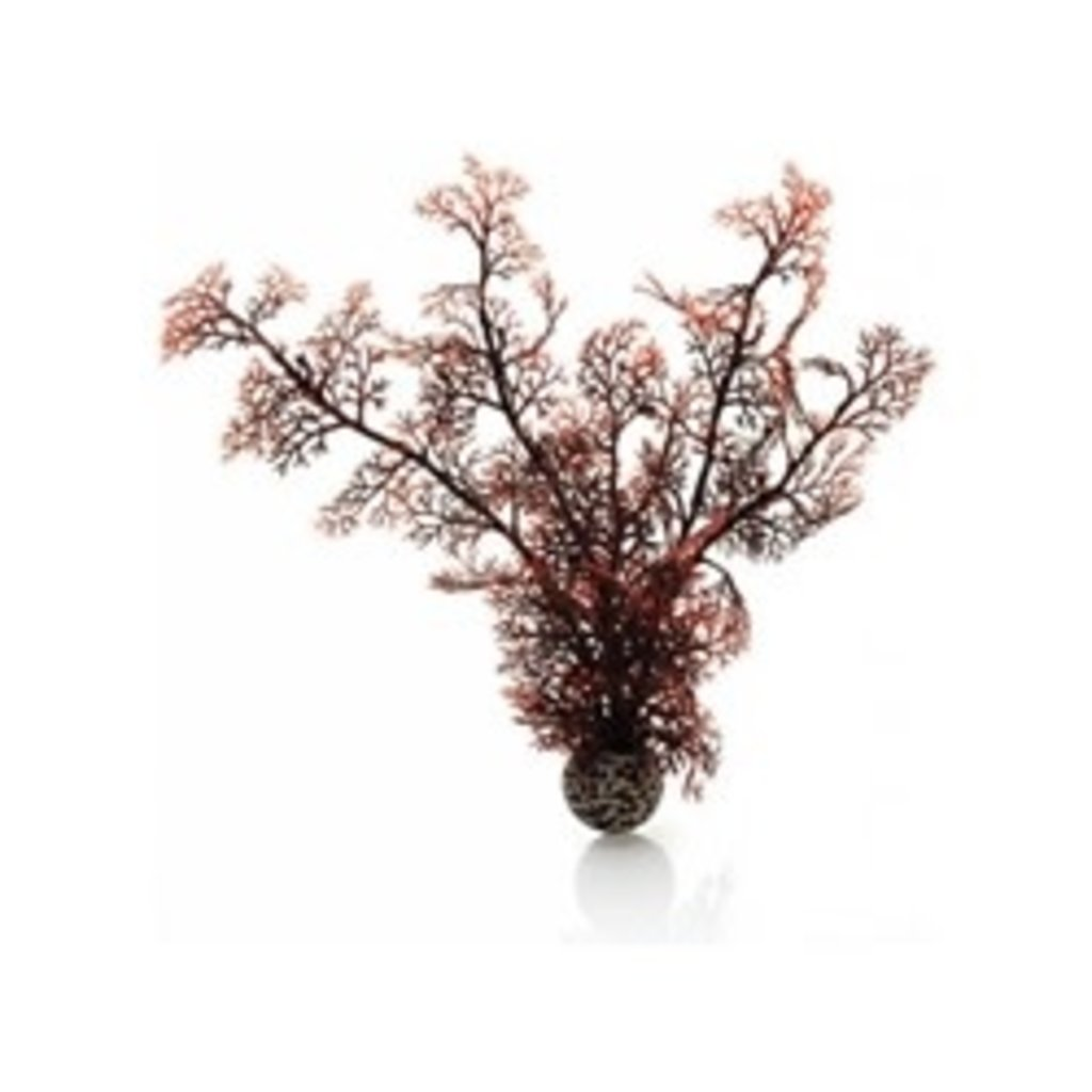 BiOrb BiOrb Crimson Sea Fan - MD