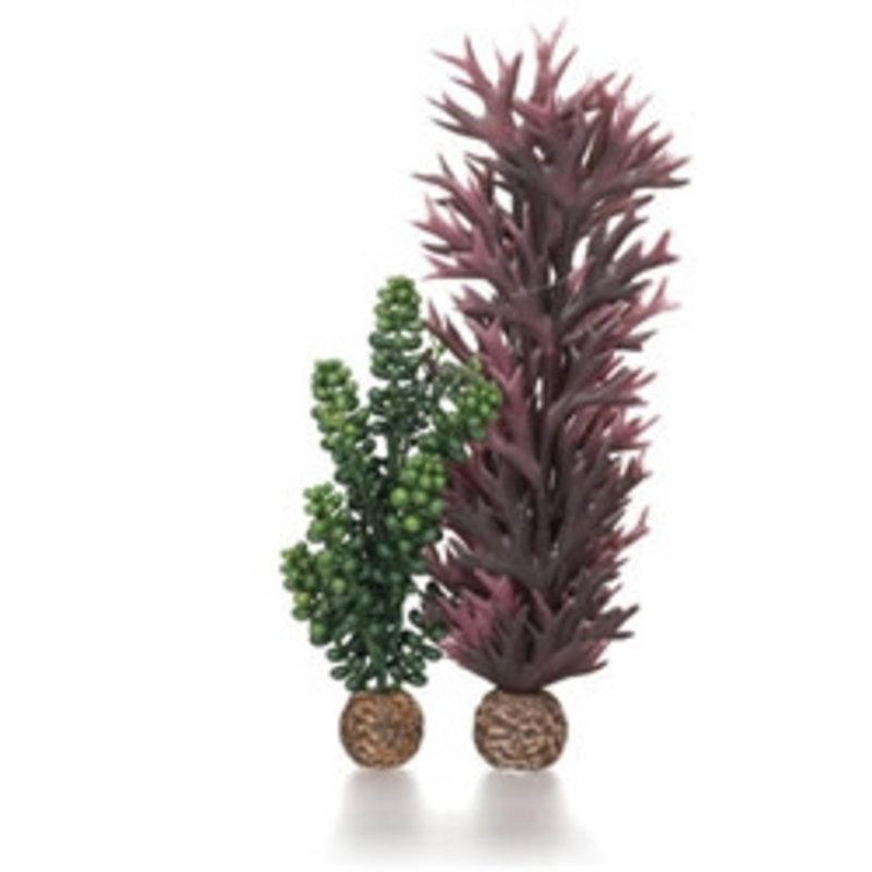 BiOrb BiOrb Seapearls & Kelp Olive Green - MD