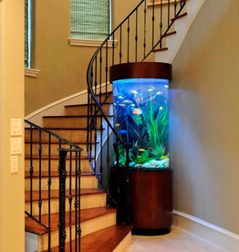 Acrylic & Glass Exhibits 120 Gallon Cylinder with Custom Cabinetry