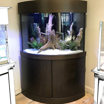 Acrylic & Glass Exhibits 110 Gallon Corner Bowfront with Custom Cabinetry