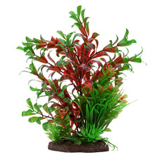Hagen Products Red Ludwigia/Dwarf Sagittarius Plant Set 8""