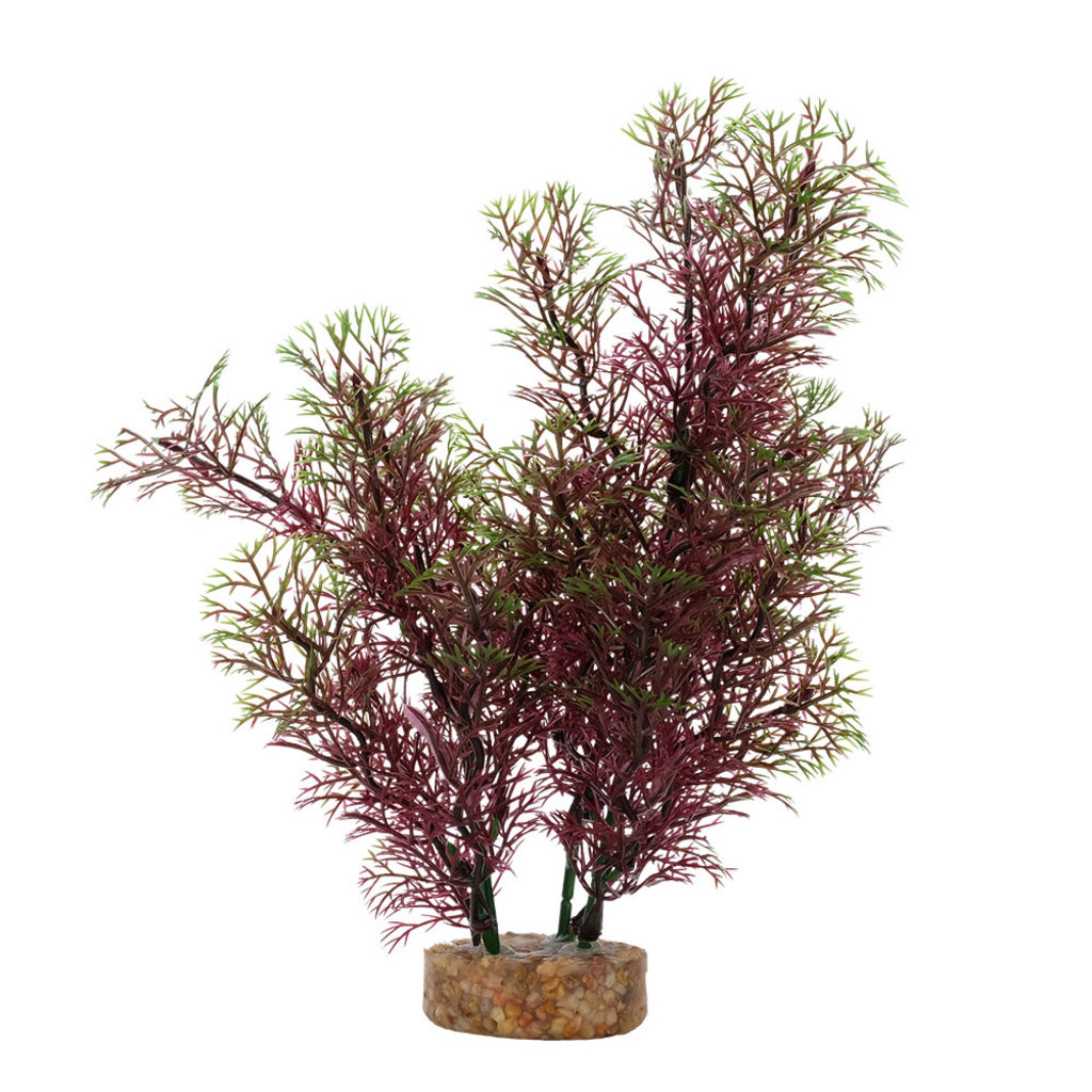 """Hagen Products Fluval Red Green Foxtail 8"""""""