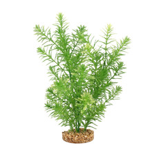 Hagen Products Fluval Green Myriophyllum 10""