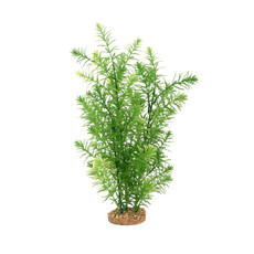 Hagen Products Fluval Green Myriophyllum 14""