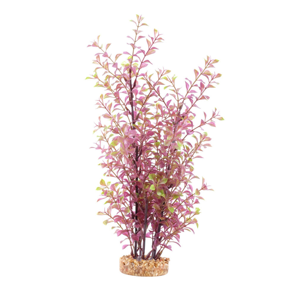 Hagen Products Fluval Red Ludwigia 14""