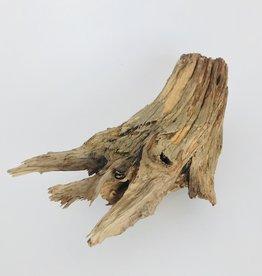 S Texas Driftwood