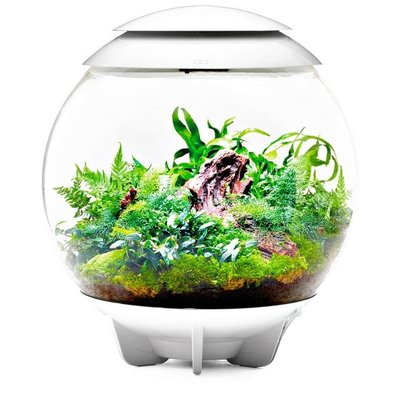 BiOrb BiOrb AIR 60 Terrarium - 16 Gal - White