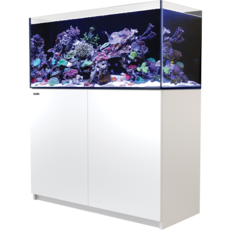 Red Sea Fish Pharm Ltd. Red Sea Reefer 350 91Gal White