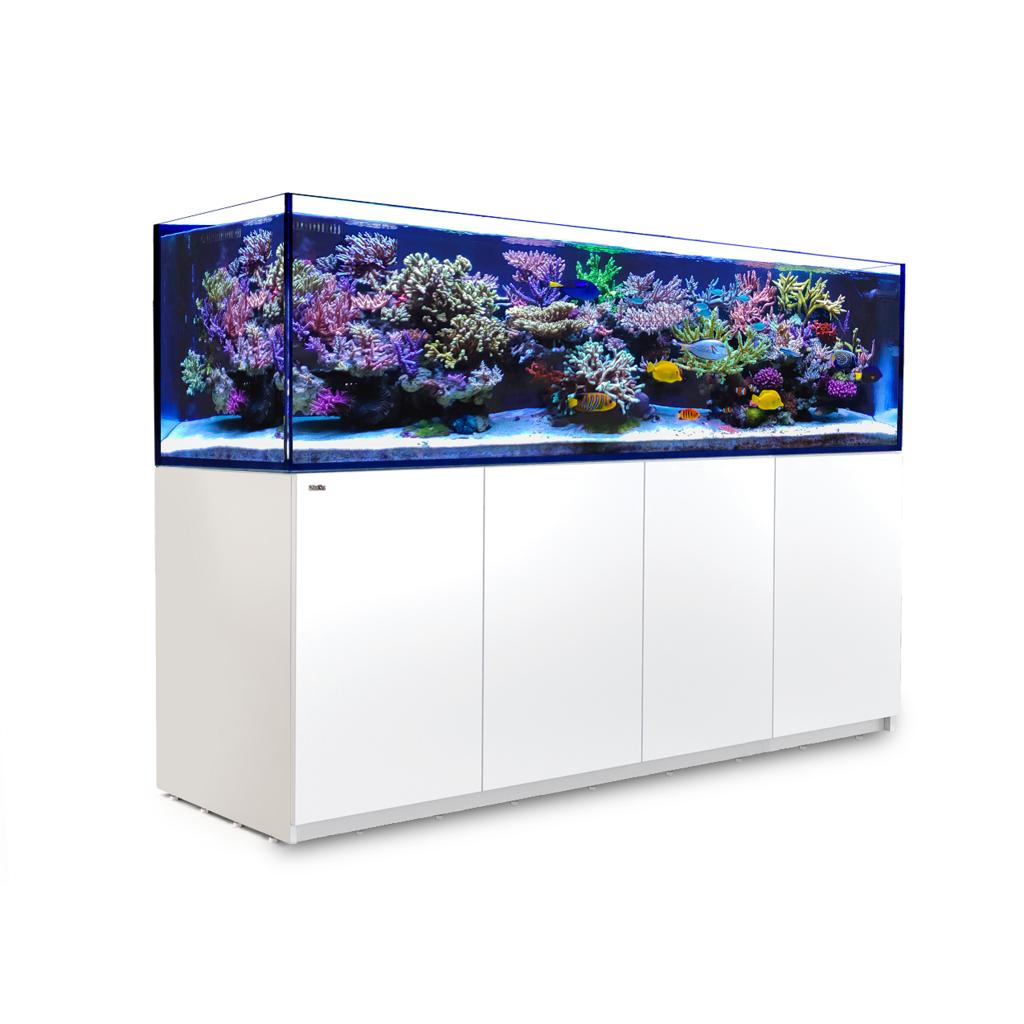 Red Sea Fish Pharm Ltd. Red Sea REEFER 3XL 900 240Gal White