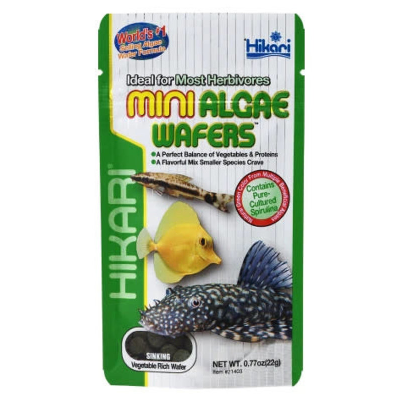 Hikari Mini Algae Wafers 0.70oz