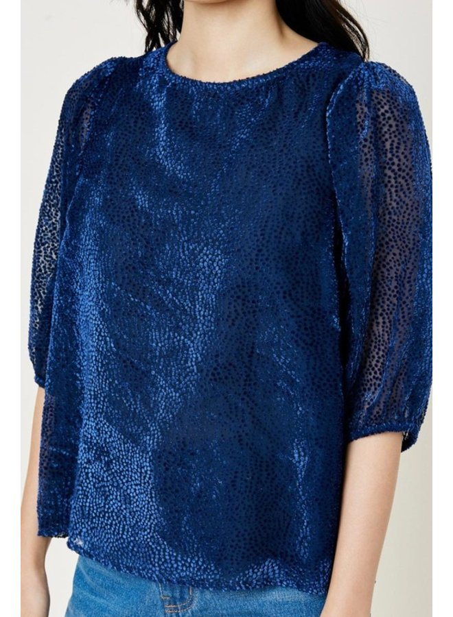 Velvet Burnout Blouse