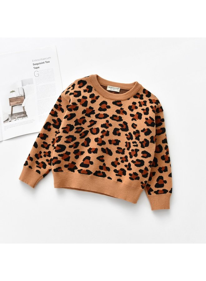 Tan Leopard Sweater