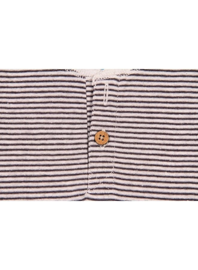 Micro Stripe Henley