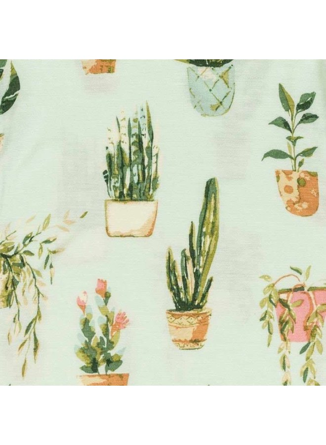 Potted Plants One Piece