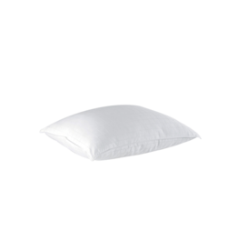 Pillow Alpine Std 20x26