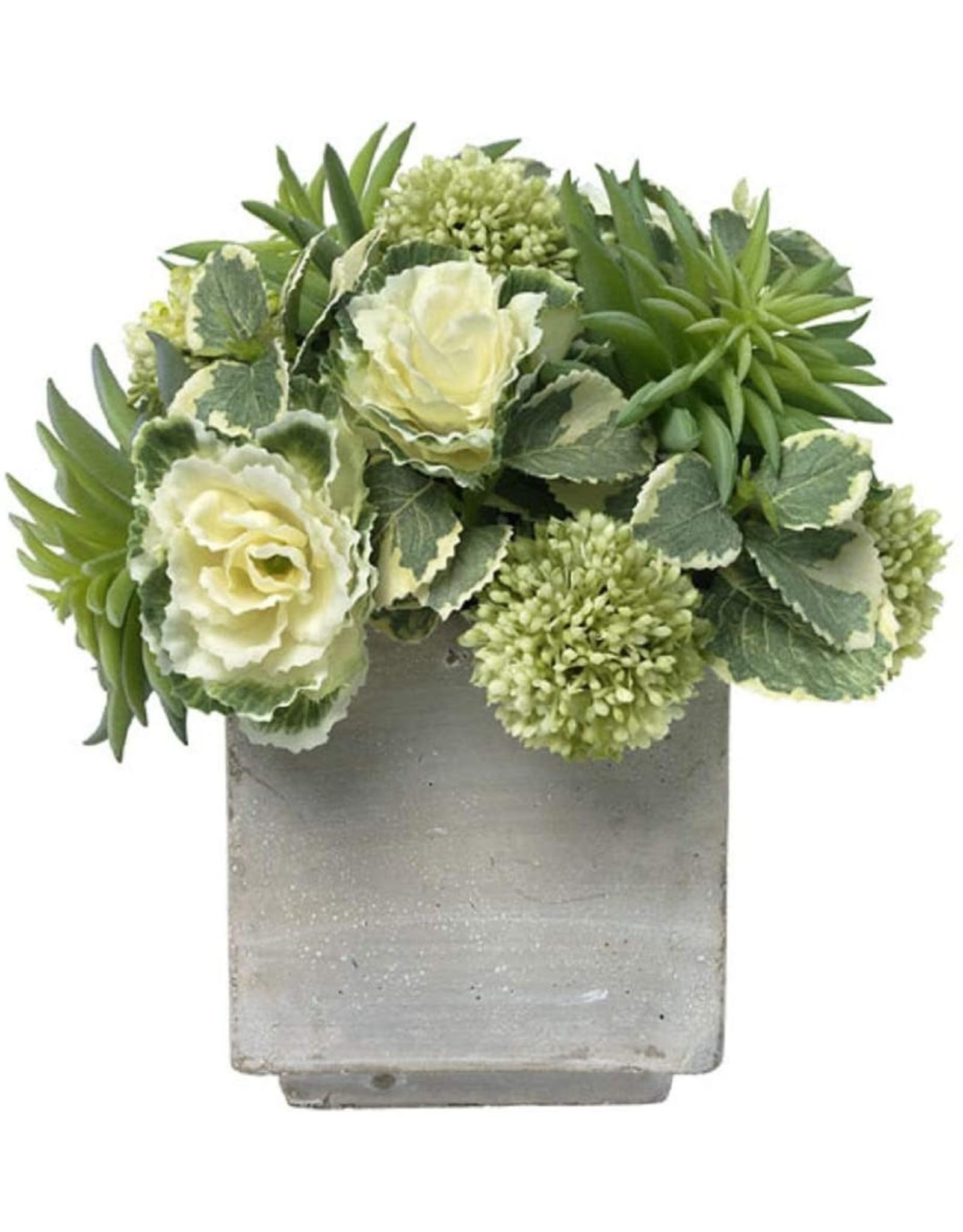 Floral Starburst Succulents
