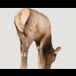 Montana Decoy Co. Montana Elk Decoy Miss September