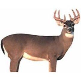 Renzo's Buck Decoy